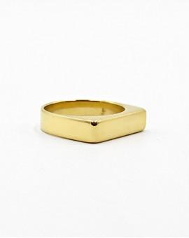 Δαχτυλίδι plane gold